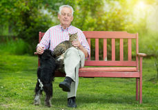 Old man with dog and cat. Old man resting on bench and cuddling dog and cat Royalty Free Stock Photo