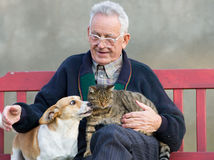 Old man with dog and cat. Senior man with dog and cat on his lap on bench Royalty Free Stock Photo