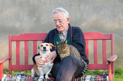 Old man with dog and cat. Senior man with dog and cat on his lap on bench Stock Photo