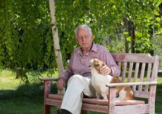 Old man with dog in garden. Old man cuddling dog on bench in garden in spring stock photography