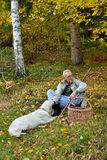 Old man and dog mushrooming Royalty Free Stock Image