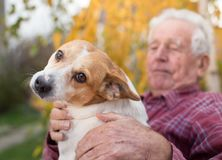 Old man with dog in park. Cute dog cuddling on old man`s lap in park in autumn. Pet love and care concept. Alternative therapy royalty free stock photography