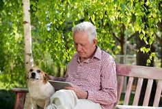 Old man with dog and tablet in garden. Old man with dog sitting on bench in garden and looking at tablet royalty free stock image