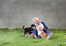 Old man with dogs Royalty Free Stock Photo