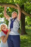 Old man doing pull-ups on a tree Stock Photography