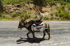 The old man on a donkey. Stock Photography