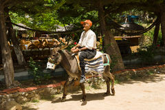 The old man on a donkey. Royalty Free Stock Photo