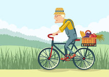 Old man drive by bike.Vector gardener Royalty Free Stock Photos