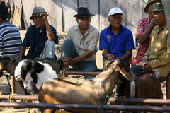 Old man faces. A goat trader in Boyolali, Central Java, Indonesia Stock Photo