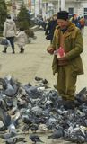 Old Man Feeding Pigeons Royalty Free Stock Photo