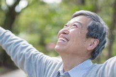 Old man feel free. Old man smile happily and feel free in the park royalty free stock photo