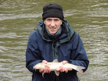 Old man fishing. An old age pensioner fishing and caught a small barbel Royalty Free Stock Photography