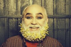Old man with flowers in beard stock photography