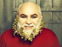 Old man with flowers and leaves in beard. Old bearded man with yellow flowers and green leaves in long grey beard on smiling happy face in red checkered shirt on royalty free stock photos