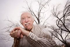 Old man in front of bare trees Stock Image
