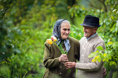 Old man giving flowers to his wife Stock Photos