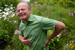 Old man having lumbago pain. While walking in the park Stock Photography