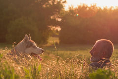 Old man with his dog in a field at sunset Royalty Free Stock Photos
