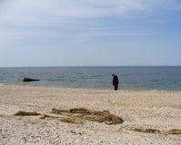 Old Man and His Sea. An old man walking with a cane by the sea royalty free stock photography