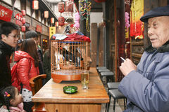 Old man with his talking bird  in kuanzhai alley , chengdu,china Stock Images