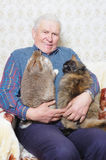 Old man hold animal. Old man hold bunny and cat on the hand Stock Images