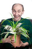Old man holding money plant Royalty Free Stock Images