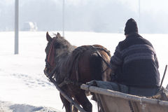 Old man in a horse cart in winter Royalty Free Stock Photo