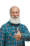 Old man with a long beard Royalty Free Stock Image