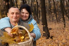 Old man and old woman with basket of maple leaves Royalty Free Stock Photos