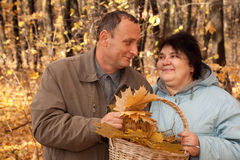 Old man and old woman hold basket of maple leaves Stock Photo