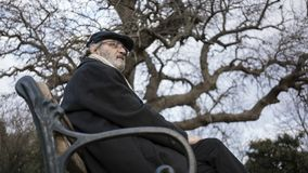 Old man in the park royalty free stock photography