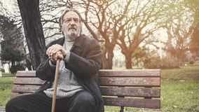 Old man in the park stock photography