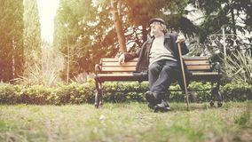 Old man in the park. Old man in the  park royalty free stock images