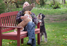 Old man with pets in the park. Senior man enjoying company of his two dogs and cat on the bench in the park Royalty Free Stock Photos
