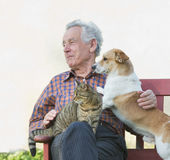 Old man with pets Royalty Free Stock Image