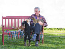 Old man with pets. Senior man with dogs and cat on his lap on bench Royalty Free Stock Photo
