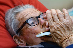 Old man play harmonica Stock Images