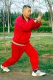 Old man play Taiji boxing stock photos
