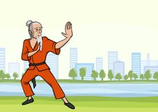 Old man practicing kung fu or wushu in city park. Martial arts master with a beard. Vector illustration. Old man practicing kung fu or wushu in city park. The Royalty Free Stock Photo