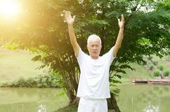 Old man practicing martial arts in the park Royalty Free Stock Images