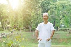 Old man practicing tai chi outdoor Royalty Free Stock Photos