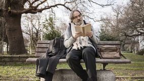 Old man reading book in the park royalty free stock images