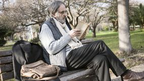Old man reading book in the park stock photos