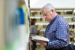 Old man reading and choosing book in library Royalty Free Stock Photo