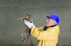 Old man rescuing cat. Old man in safety suit holds cat with his arms Stock Photos