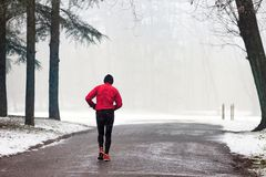 Old man runner runs in the Park of Monza. Old man runner runs through winter forest of the Park of Monza , Italy Royalty Free Stock Image