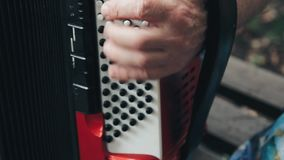 Old man`s hands playing the accordion stock footage