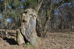 Old man sculpture carved from tree in the sunny forest Royalty Free Stock Photography
