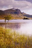 Old Man of Storr over Loch. The Old Man of Storr on the Isle of Skye taken over Loch Leathann. The Storr is reflected in the calm dawn waters of the loch royalty free stock images