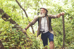 Old man is tired from walking in woodland Royalty Free Stock Images